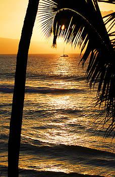 Marilyn Hunt - Hawaiin Sunset