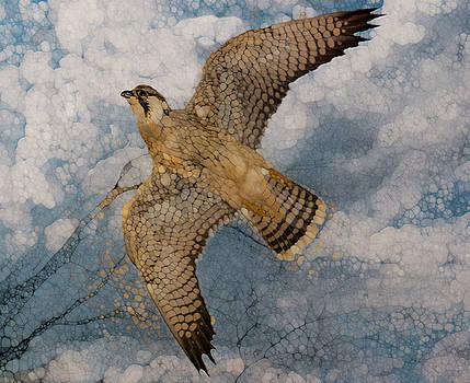 Hawk-Flight Series by Jack Zulli