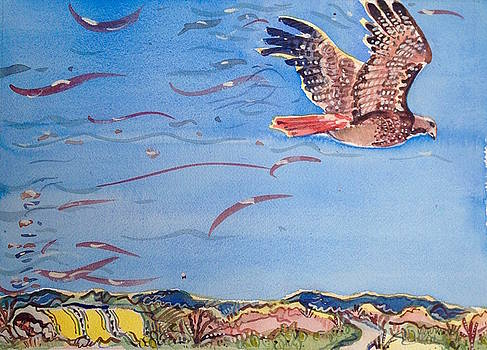 Hawk Flight by Virginia Vovchuk