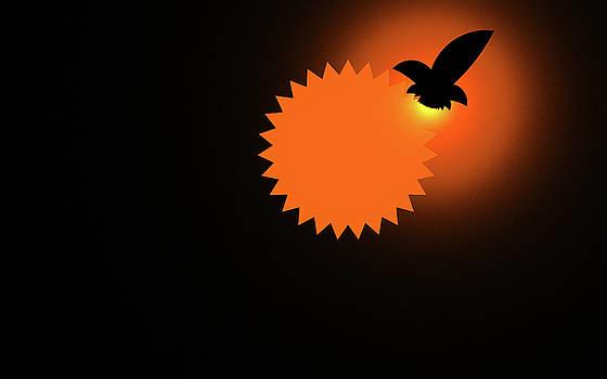 Hawk by GJ Blackman