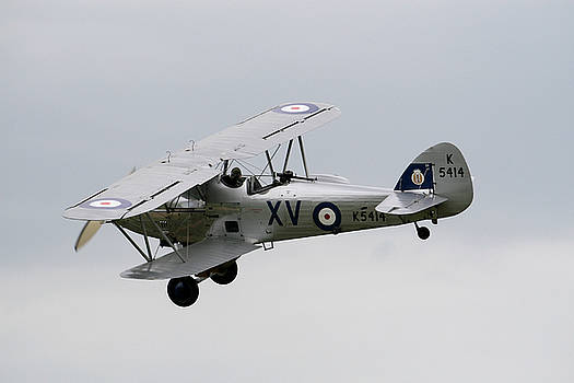 Hawker Hind by Dave Perks