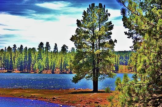Hawley Lake by Helen Carson