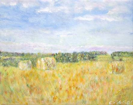 Hay and Bales in the Countryside by Glenda Crigger