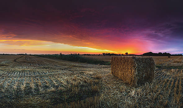 Hay at Sunrise - Panorama by Cale Best