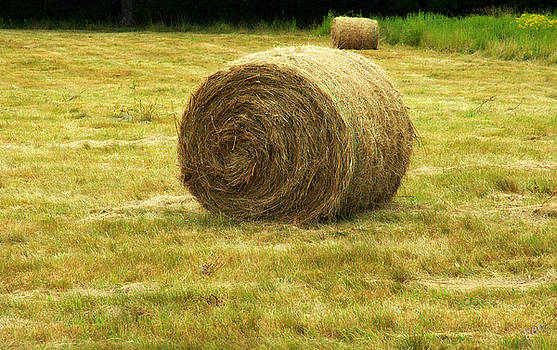 Hay bale  by Bruce Carpenter