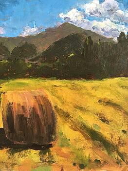 Hay Bale by Susan E Jones