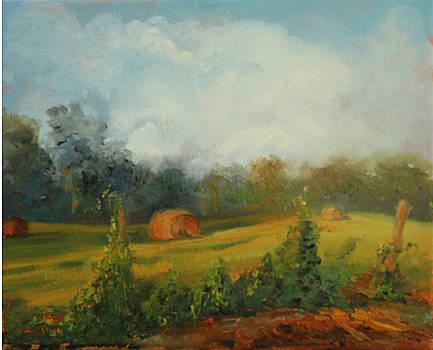 Hay Bales and Kudzu by Jill Holt