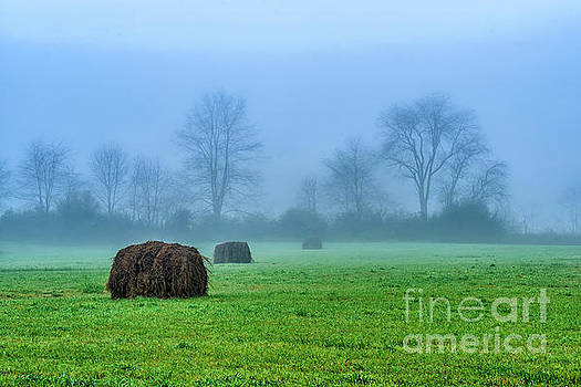 Hay Bales in Fog by Thomas R Fletcher