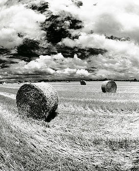 Hay Bales in Georgia by Alan Mogensen