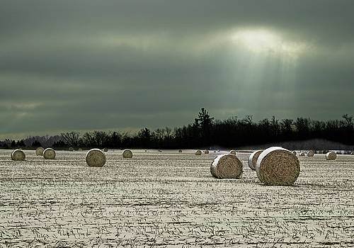 Hay Bales in the Snow by Judy Johnson