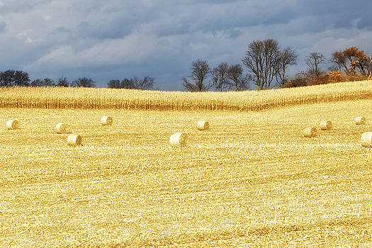 Hay Bales by John Daly
