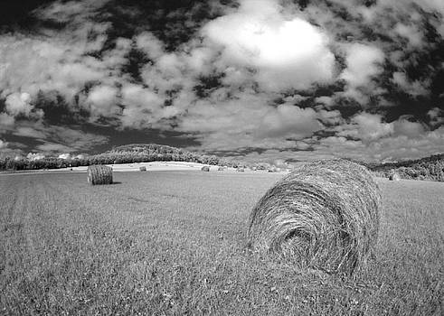 Hay Bales New York by Alan Mogensen