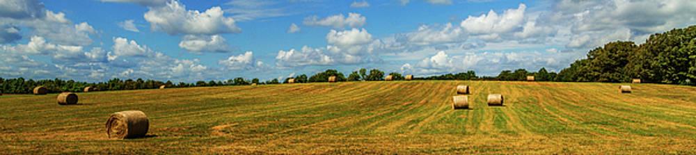 Hay Bales Panoramic by Barry Jones