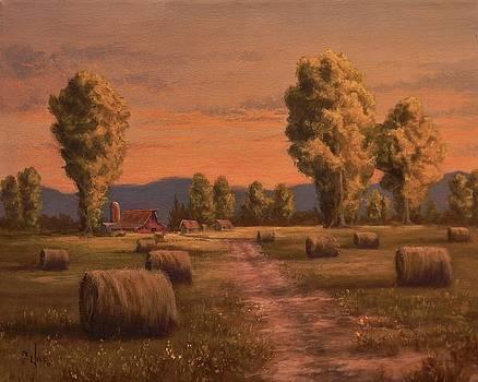 Hay Bales by Paul K Hill