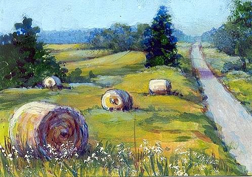 Hay Bales by Peggy Conyers