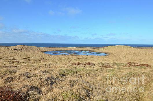 Hay Field Surrounding Bardalaug Pool in Iceland by DejaVu Designs