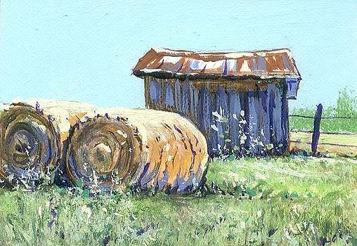 Hay Harvest by Peggy Conyers