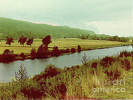 Hay-Making Field Alongside a Stream - Scotland by Merton Allen