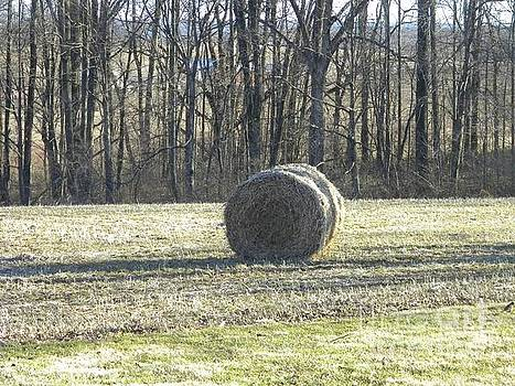 Hay Roll  by Kristy Evans