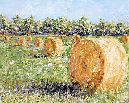 Hay Rolls by Lewis Bowman