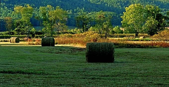 Hay Season by Rodney Lee Williams
