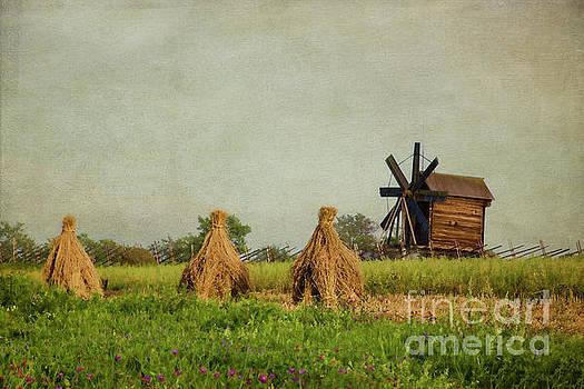 Hay Stacks by Elena Nosyreva