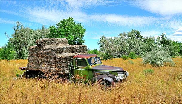 Hay Wagon by Mark Lemon
