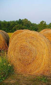 Haybale by Sherry  Kepp