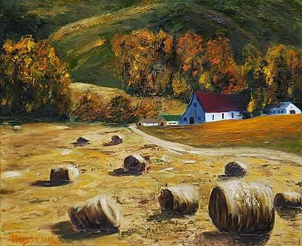 Hayfield by Brian Hustead
