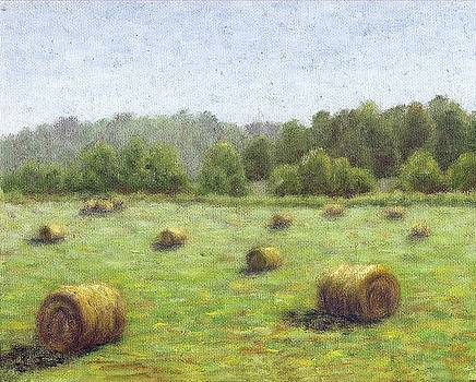 Hayfield by Jean Ehler