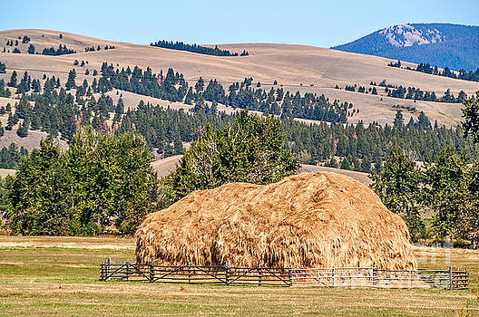 Haystack Created with a Beaverslide by Sue Smith