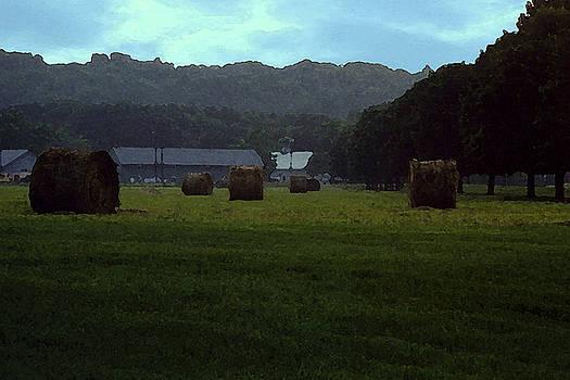 Haystack Fields by Leonard Rosenfield