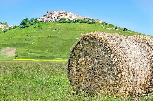 haystack hay bale Castelluccio di Norcia Monti Sibillini Perugia by Luca Lorenzelli