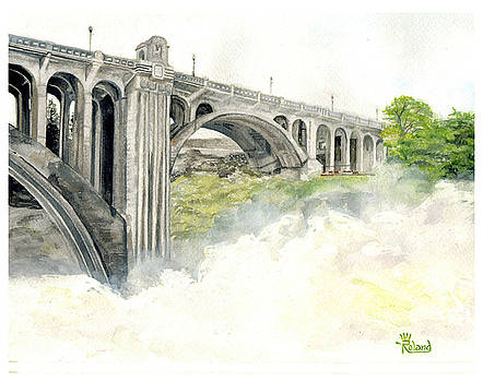Haze At The Falls by Tracy Dupuis Roland