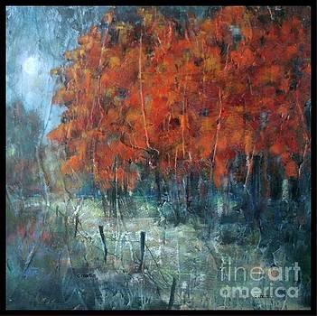 Hazy Sunday Morning. Late October by Charleen Martin