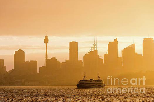 Hazy sunshine on Sydney harbour by Andrew Michael