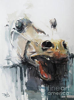 Head 4 by Tony Belobrajdic