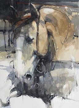 Head 6 by Tony Belobrajdic