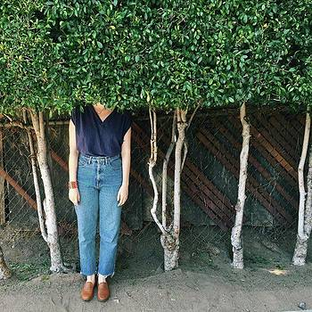 Head In The 🌳s by Courtney Jines