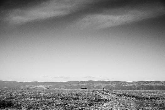 Headed to the Serengeti in B and W by Mary Lee Dereske