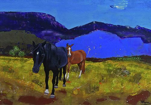 Heading Home by Elizabeth Bogard
