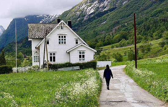 Heading Home in Norway by Lexi Heft