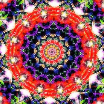Healing Mandala 7 by Lila Violet