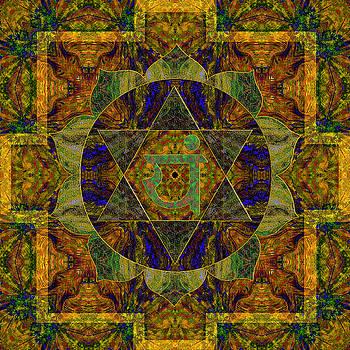 Health Mandala by Julian Venter