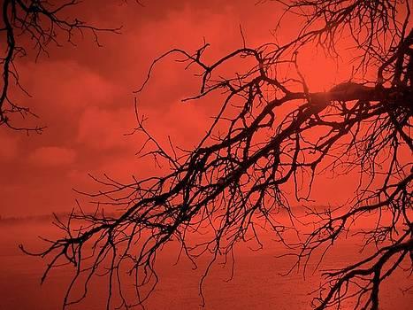 HeART Branch by Shirley Kurian