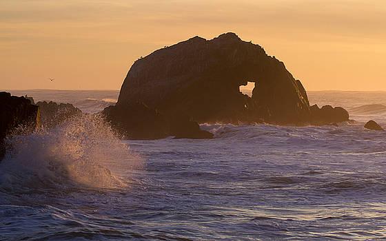 Heart of the Ocean by Nathan Rupert