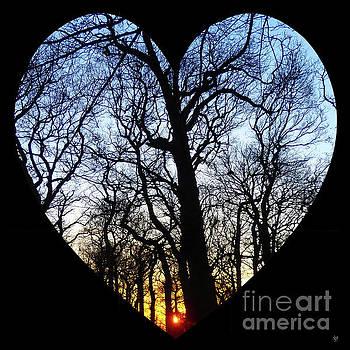 Heart of the sunrise by Neil Finnemore