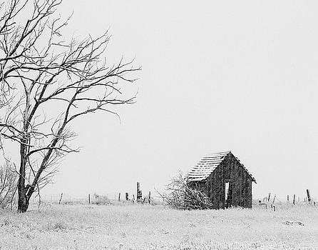 Heart of Winter by Nadine Berg
