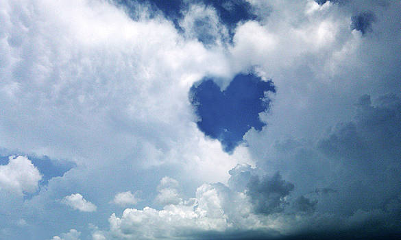 Heart Shaped World by Karen Tullo