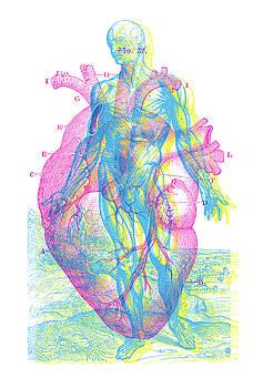 Heart-Venus by Gary Grayson